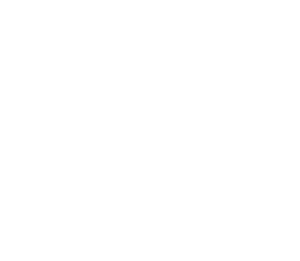 Non-Violence Project Sweden